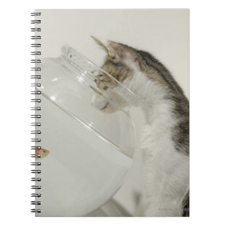 Cat looking at fish in fishbowl spiral notebook