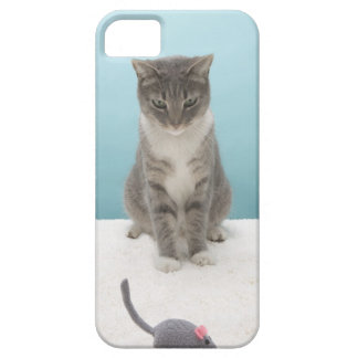 Cat looking at toy mouse on rug iPhone 5 cover