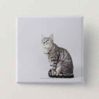 Cat looking up 15 cm square badge