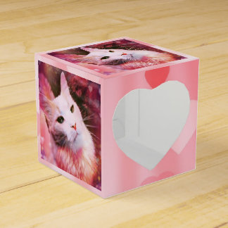 Cat Love Heart Valentine Pink Funny Favor Box
