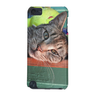 Cat Love iPod Touch 5G Case