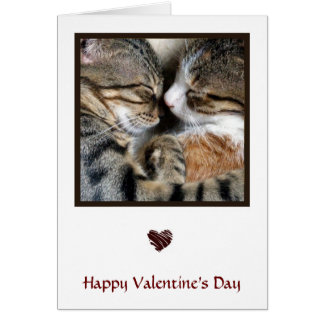 Cat Love Valentine Card