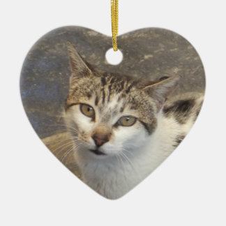Cat Lover's ornament, customize Christmas Ornament