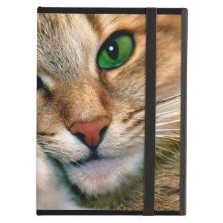 Cat Lovers Powis iPad Air Case