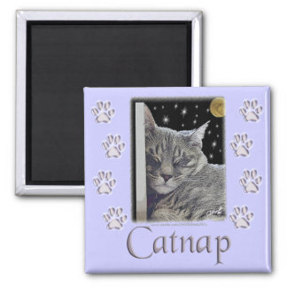 "Cat Lover's Purple Paws ""Catnap"" Square Magnet"