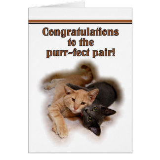 Cat Lovers Wedding Congratulations  Card
