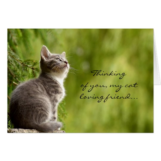 Cat loving friend thinking of you greeting card