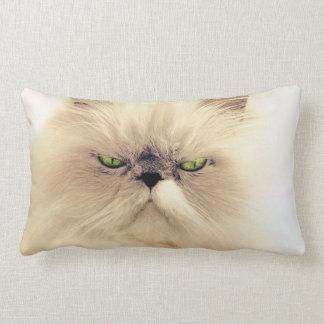 cat lumbar cushion