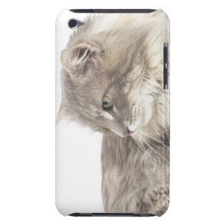 Cat lying down iPod Case-Mate cases