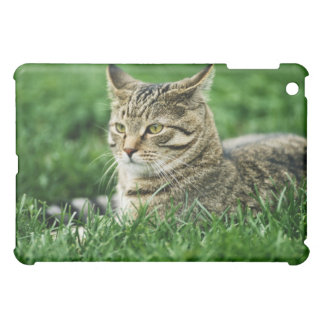 Cat lying in grass iPad mini cover