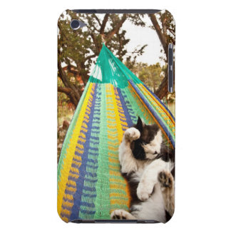 Cat lying in Mayan Mexican hammock iPod Touch Cases
