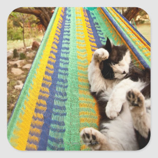 Cat lying in Mayan Mexican hammock Square Sticker