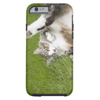 Cat lying on grass, close-up tough iPhone 6 case