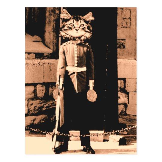 Cat Man Guard Postcard