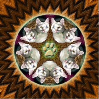 Cat Mandala magnet photo sculpture