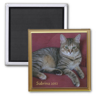 Cat Memorial Photo Frame Magnet