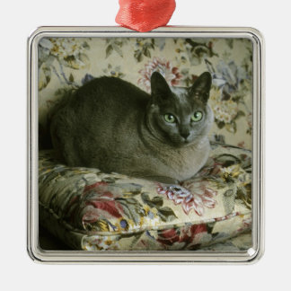 Cat, Minnie, Tonkinese. Christmas Ornament