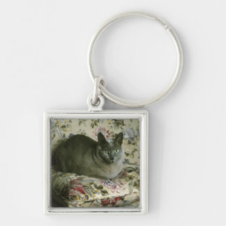 Cat, Minnie, Tonkinese. Key Ring