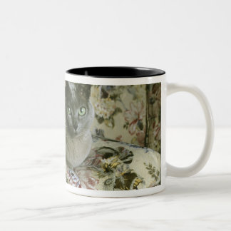 Cat Minnie Tonkinese Coffee Mug