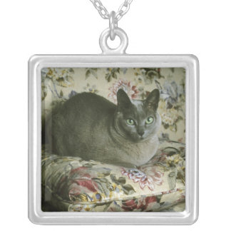 Cat, Minnie, Tonkinese. Silver Plated Necklace