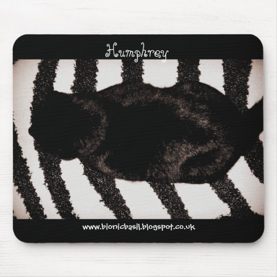 Cat Mouse Pad - Camouflage Kitty