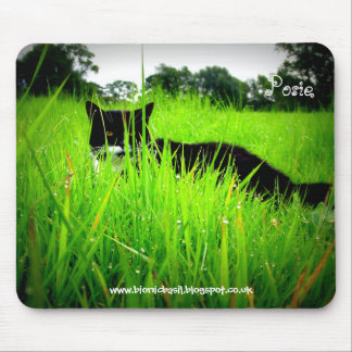 Cat Mouse Pad - Morning Dew