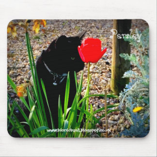 Cat Mouse Pad - There's a Tulip on my Head!