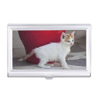 Cat, Mykonos, Greece Business Card Holder