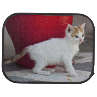 Cat, Mykonos, Greece Car Mat