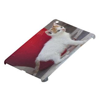 Cat, Mykonos, Greece iPad Mini Cover