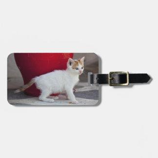 Cat, Mykonos, Greece Luggage Tag
