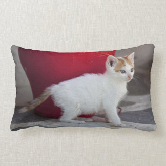 Cat, Mykonos, Greece Lumbar Cushion