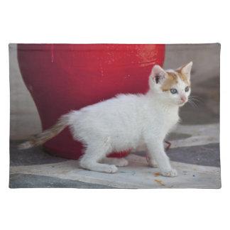 Cat, Mykonos, Greece Placemat