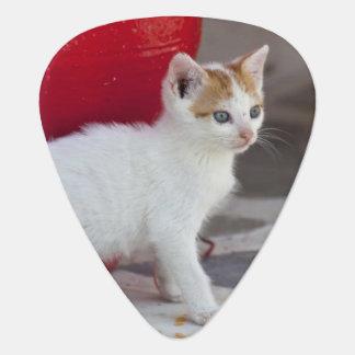 Cat, Mykonos, Greece Plectrum