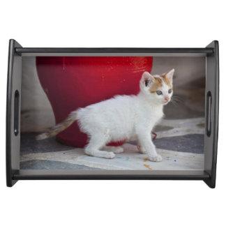 Cat, Mykonos, Greece Serving Tray