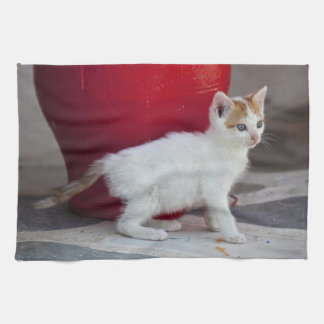 Cat, Mykonos, Greece Tea Towel