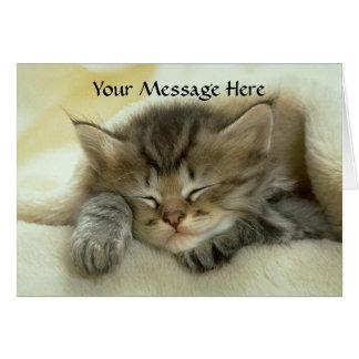 Cat Nap Greeting Card