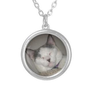 Cat Nap Round Pendant Necklace