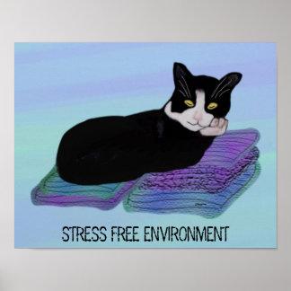 Cat Nap Stress Free Environment Poster