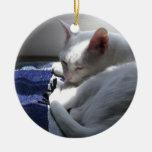 Cat napping ornaments