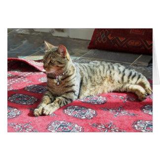 Cat Notecard: Minnie the Minx Greeting Card