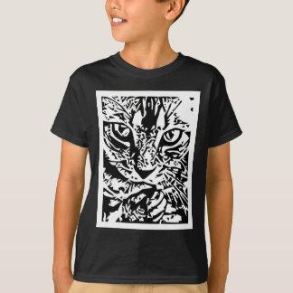 Cat observing shirts
