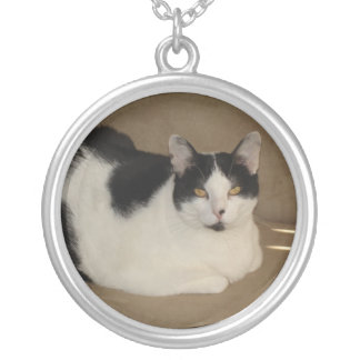 Cat On A Couch Round Pendant Necklace