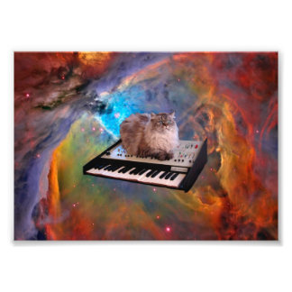 Cat on a Keyboard in Space Photo Print