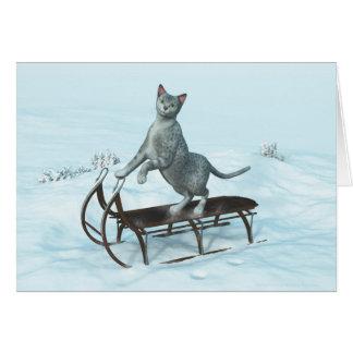 Cat on a sledding card