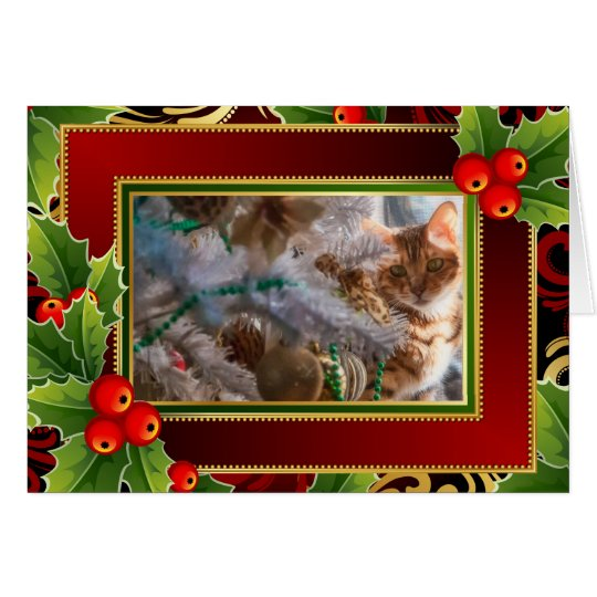 Cat on Christmas - Holiday Background Card