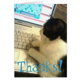 Cat On Computer Thank You Card
