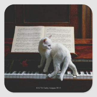 Cat on piano square sticker