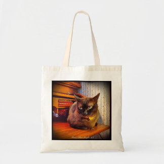 Cat on Roll Top Desk, 2 Budget Tote Bag