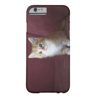 Cat on sofa barely there iPhone 6 case